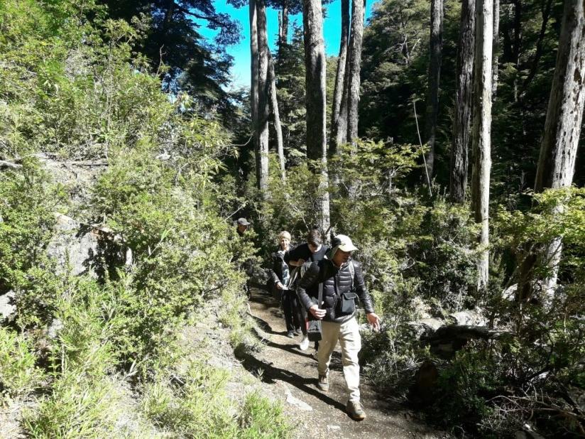 In Mirador Bandurrias, A Mirador Bandurrias, San Martin de los Andes, Neuquén, Argentina you can Trekking Guiado: Mirador Bandurrias e Islita with LATITUR
