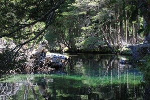 With LATITUR on San Martin de los Andes you can make Trekking Guiado: Termas de Queñi