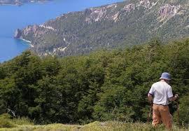 In Cerro Falkner, Neuquén, Argentina you can Trekking Guiado: Cerro Falkner with LATITUR