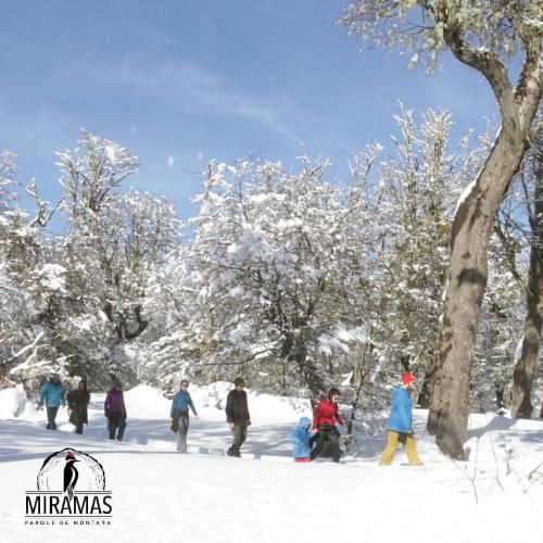 In MIRAMAS, Q8370 San Martin de los Andes, Neuquén, Argentina you can Caminata con raquetas de nieve nocturna en Miramas with LATITUR