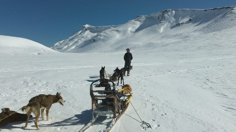 In Caviahue, Neuquén, Argentina you can Paseo en Trineo de Perros en Caviahue with LATITUR