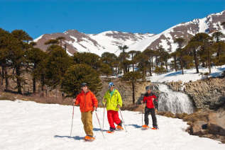 With LATITUR on Caviahue, Neuquén, Argentina you can make Caminata con Raquetas de Nieve en Caviahue