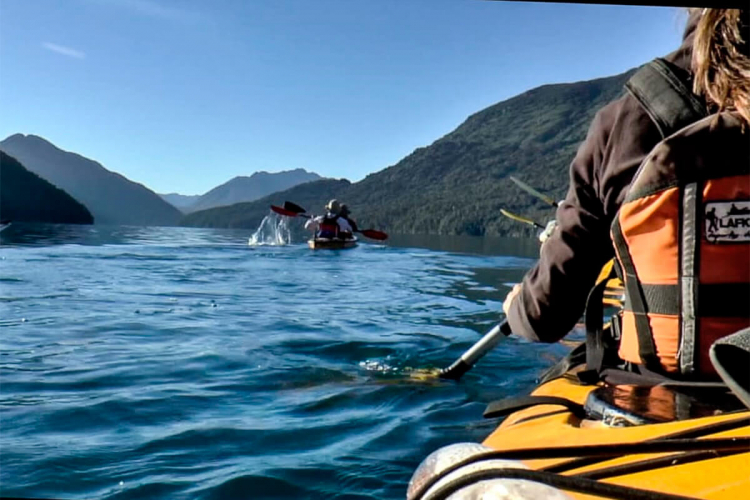 In Lago Moreno, Río Negro, Argentina you can Kayak de Travesia Lago Moreno Oeste - Morenito with LATITUR
