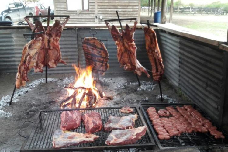 In La Fragua, Estancia San Ramon, Pilcaniyeu, Río Negro, Argentina you can Cabalgatas en la estepa - medio día with LATITUR