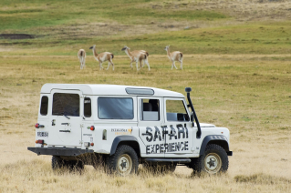 With LATITUR on El Calafate, Santa Cruz, Argentina you can make Safari Experience en 4x4