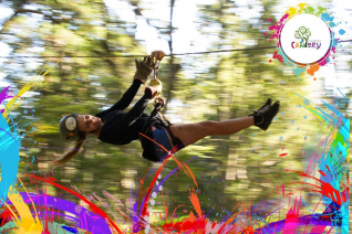 With LATITUR on El Bolson you can make Patagonia Canopy Tour