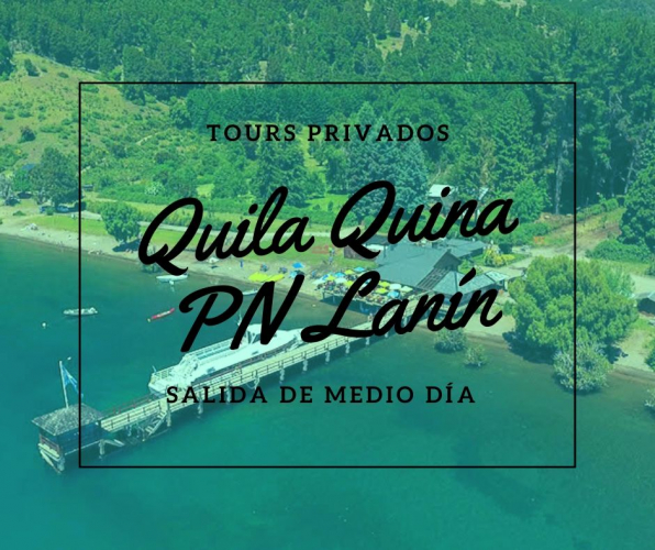 In San Martin de los Andes, Neuquén, Argentina you can Excursion a Quila Quina Parque Nacional Lanin with LATITUR