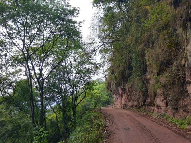 In Valle Colorado, Jujuy, Argentina you can de la Quebrada a las Yungas por el Qhapac Ñan with LATITUR