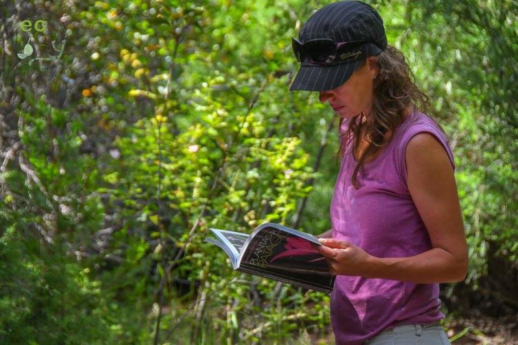 In San Martin de los Andes, Neuquén, Argentina you can Caminata de interpretación de flora y fauna with LATITUR