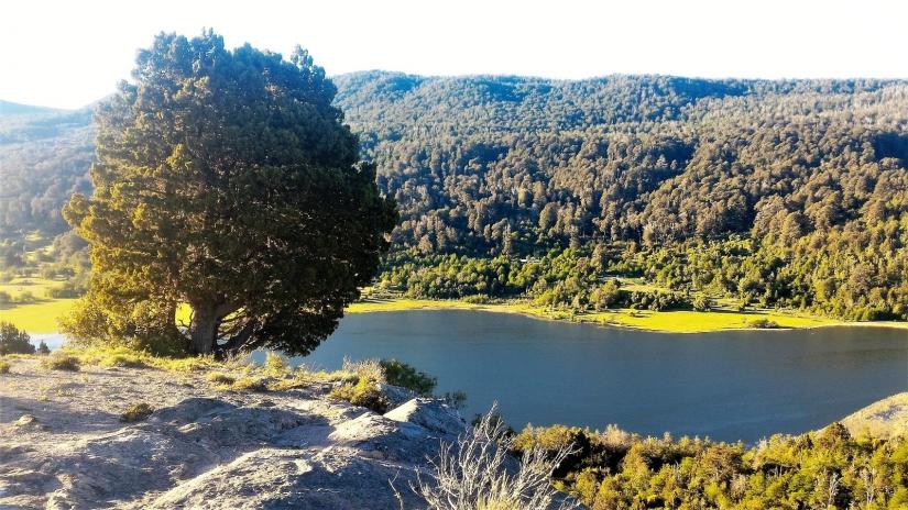 In 7 km de por ruta 62, San Martin de los Andes, Neuquén, Argentina you can Trekking a Laguna Rosales y alrededores with LATITUR