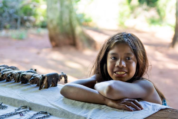 In Puerto Iguazú, Misiones, Argentina you can Excursión a Aldea Guaraní Fortín Mbororé with LATITUR