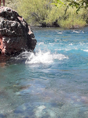 In Río Chimehuin, Neuquén, Argentina you can Rafting en el río Chimehuin with LATITUR