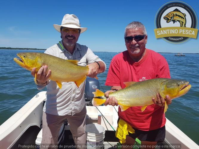 In Paso de la Patria, Corrientes, Argentina you can Pesca Deportiva en Paso de la Patria Medio Día with LATITUR