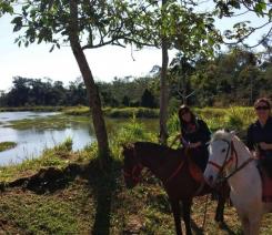 With LATITUR on Puerto Iguazú you can make Circuito de 2 horas cabalgata en Iguazú